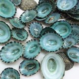 WS113A Wonders Of The Sea Pack - Blue/Green Limpet Shells